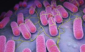 srebro naturalny antybiotyk